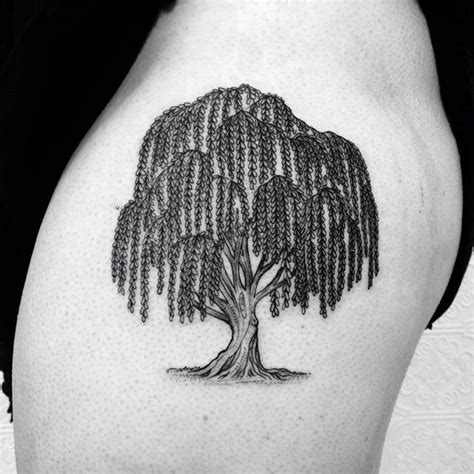 willow tree tattoos weeping willow designs ideas and meaning tattoos