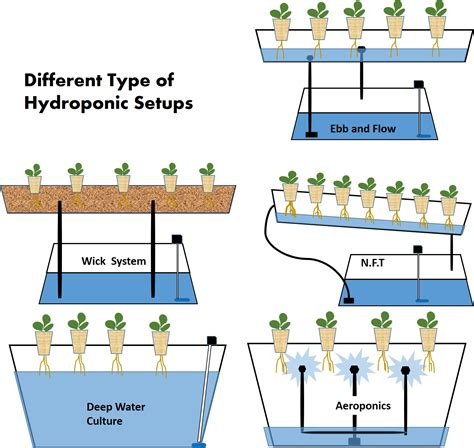 how to mix nutrients for hydroponics diagram two apartment