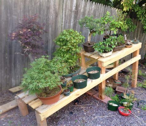 bonsai bench bonsai bench tom s bonsai