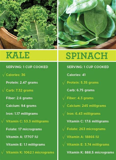 Spinach Detox Benefits by Best 20 Kale Benefits Ideas On Healthy