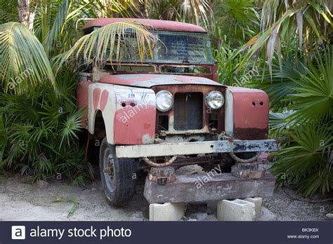 land rover jungle land rover abandoned in a seaside jungle in mexico