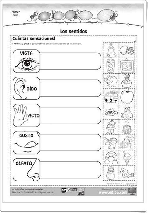 imagenes sensoriales castellano m 225 s de 25 ideas fant 225 sticas sobre los cinco sentidos en