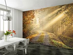Wall Art Murals Wallpaper Wall Mural Autumn Forest Wallsorts