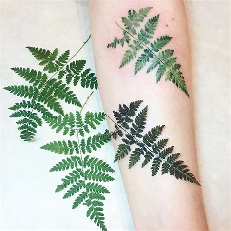 fern leaf tattoo designs best 25 fern ideas on pattern design