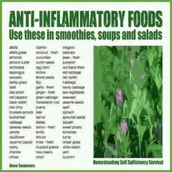 anti inflammatory foods herbal wonderfulness