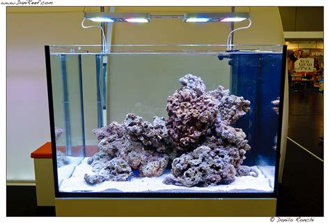 lade sottopensile illuminazione led x acquario illuminazione illuminazione