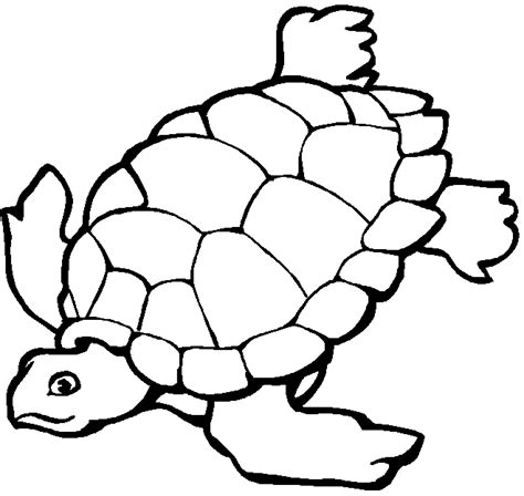 ocean coloring pages for preschool ocean coloring pages coloringpagesabc com