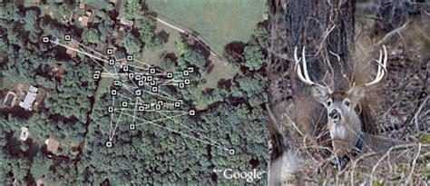 google images deer deer blogs his own gps position in google earth google