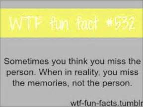 i facts 23 wtf fun facts youtube
