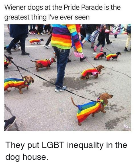 who put the dog in the dog house 25 best memes about parade parade memes