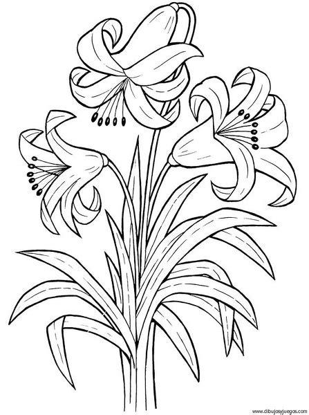 Imagenes Flores Exoticas Para Colorear | ramos de flores para colorear e imprimir imagui