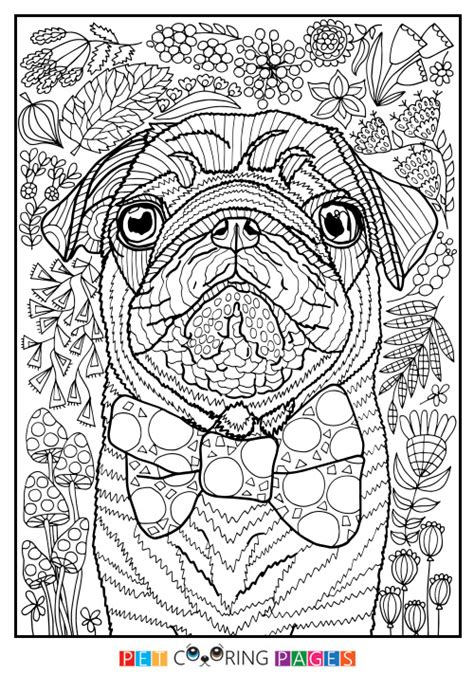 enlightened pugs coloring book books pug coloring page quot sidney quot zileart