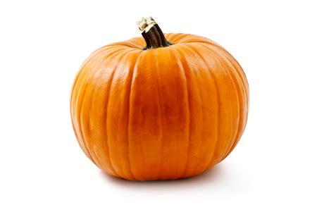 why pumpkins on pumpkin