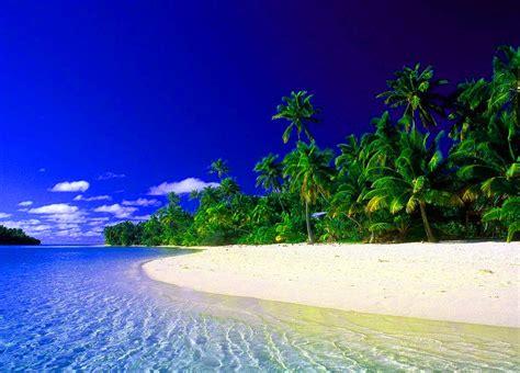 imagenes bonitas de paisajes para descargar fondo escritorio paisaje bonita playa y palmeras