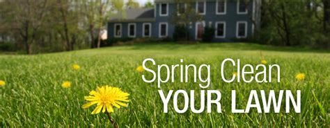 spring landscaping tips top 28 lawn care tips caring for tips for starting a
