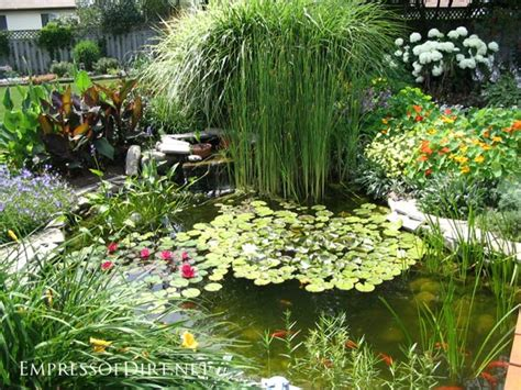Large Backyard Umbrella 17 Beautiful Backyard Pond Ideas For All Budgets