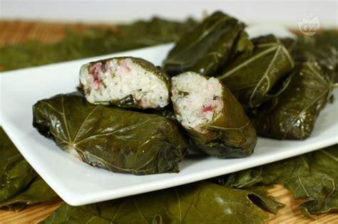 cucina tipica albanese ricetta involtini in foglie di vite la ricetta di