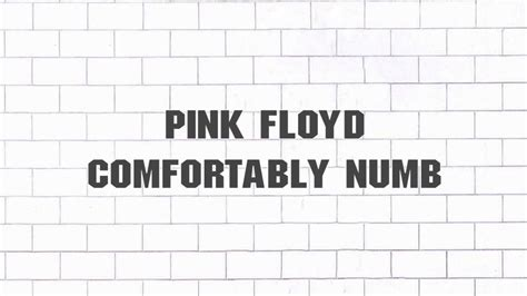 comfortably numb 2011 pink floyd comfortably numb 2011 remaster youtube