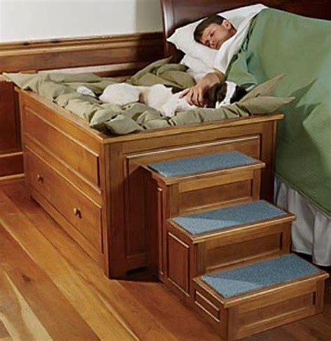 lit pour chien a vendre comment fabriquer un lit pour chien facile