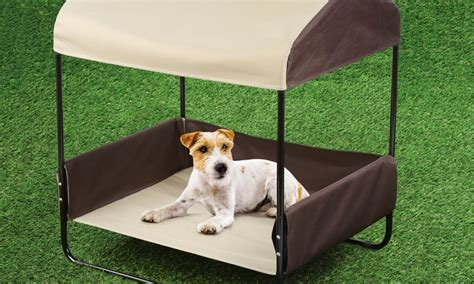 Pet Canopy Bed by Pet Canopy Bed Buy Pawslife Pet Canopy Bed From Bed Bath