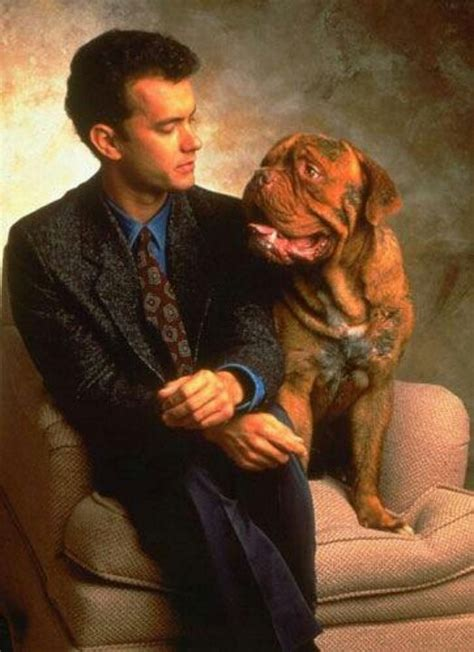 what of is turner and hooch turner and hooch