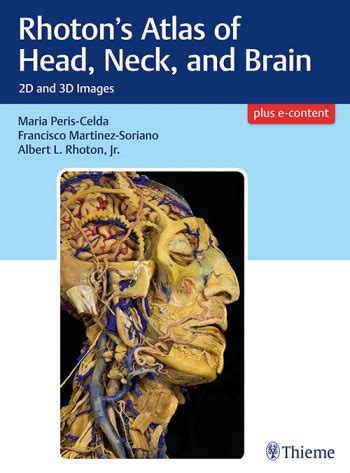 rhoton s atlas of neck and brain 2d and 3d images
