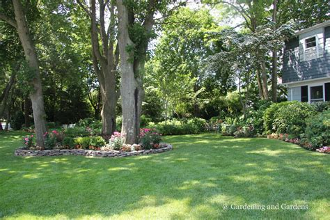 landscape around trees garden ideas around trees modern home exteriors