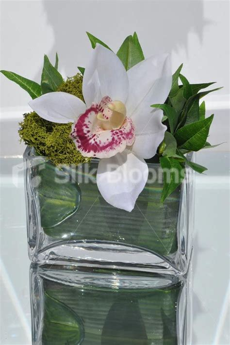 small white fresh touch cymbidium orchid and green