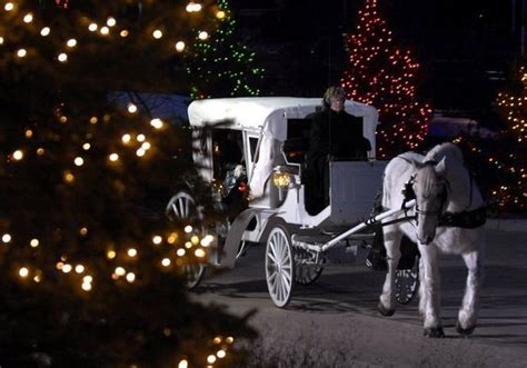 meijrs christmas lights light displays trees and other happenings on tap in west michigan mlive