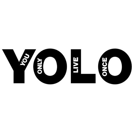Yolo You Only Live Once 2019 yolo you only live once car bumper window