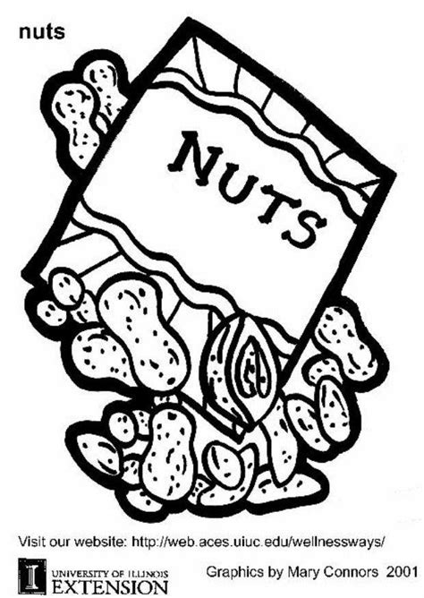 coloring page nuts img 5870