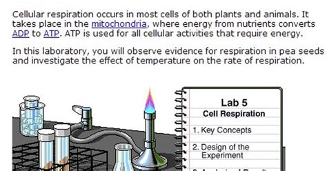 cellular respiration lab bench cellular respiration is the process where the solar energy