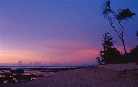 pin pin wallpaper pemandangan pantai and post on pinterest pin lukisan pemandangan waktu senja tepi pantai on pinterest