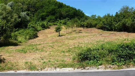e terreni terreni edificabili bologna in vendita e in affitto cerco