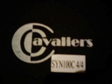 Biola Cavaliers Ty 1 Size 44 hal hal yang harus diperhatikan sebelum membeli biola anityaaap sss