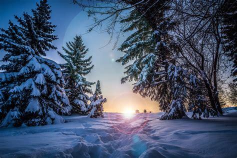 wallpaper  winter snow sunlight path