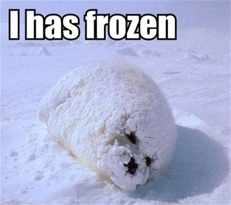 Cold Shoulder Meme - frozen wallpaper hd july 2013