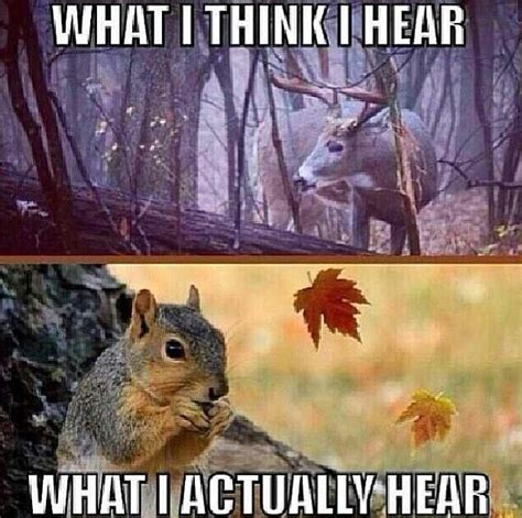 Hunting Memes - 74 best hunting memes images on pinterest hunting stuff deer hunting quotes and res life