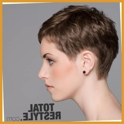 Ultra Short Haircuts For Women | ultrashort pixie blackhairstylecuts com