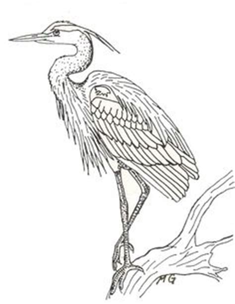 coloring pages of water birds 1000 images about heron tattoo on pinterest blue heron