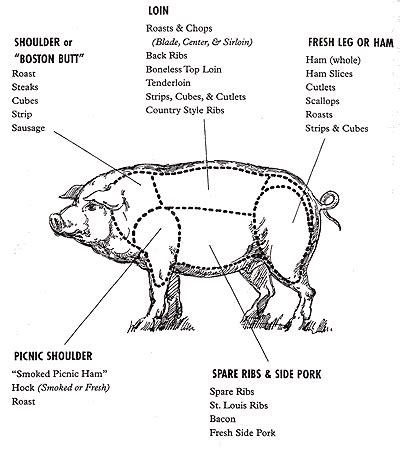 how to butcher a pig diagram facetiae october 2008
