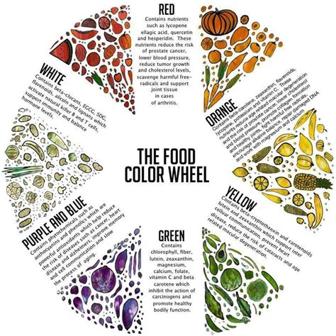food coloring chart the food color chart infographic colour chart veggies