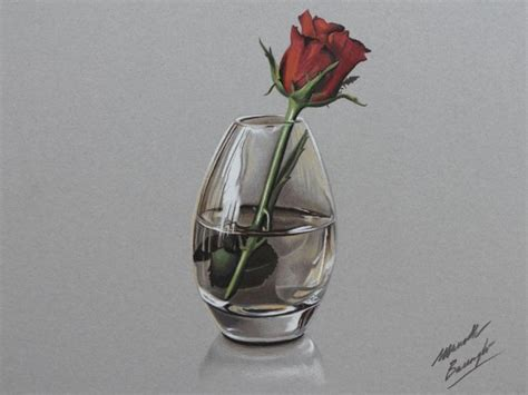 Simple Vase Realistic Rose Flower Drawing Preview