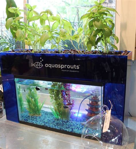 head over to kickstarter and support the aquasprouts self