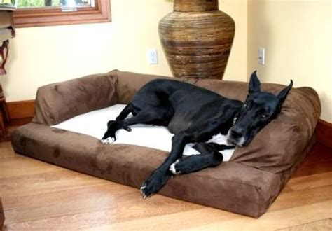 extra large dog beds for great danes extra large dog bed orthopedic foam xl sofa couch breed
