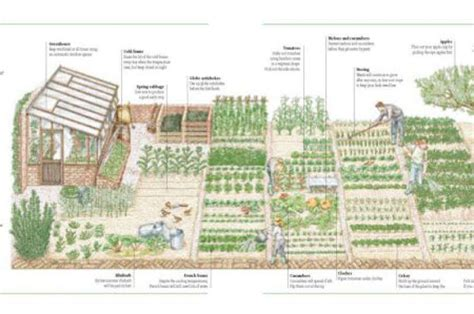 homestead layout plans on 1 acre or less homestead design ftempo