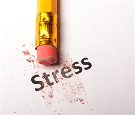 how to your to stop everything how to stop stress from ruining your enlightenment gateway