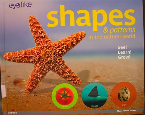 patterns of nature book shapes patterns in the natural world books to teach art
