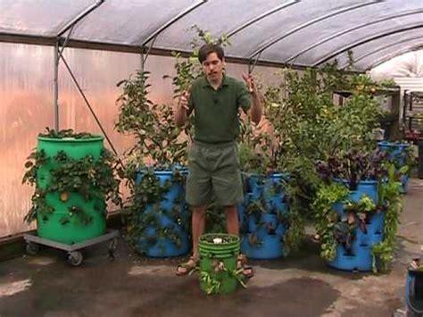 vertical barrel gardening  striking