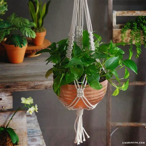 Macrame Plant Holder Tutorial - 25 best ideas about macrame plant holder on